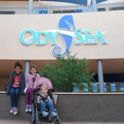 OdySea Aquarium - Things to do with Kids in Phoenix